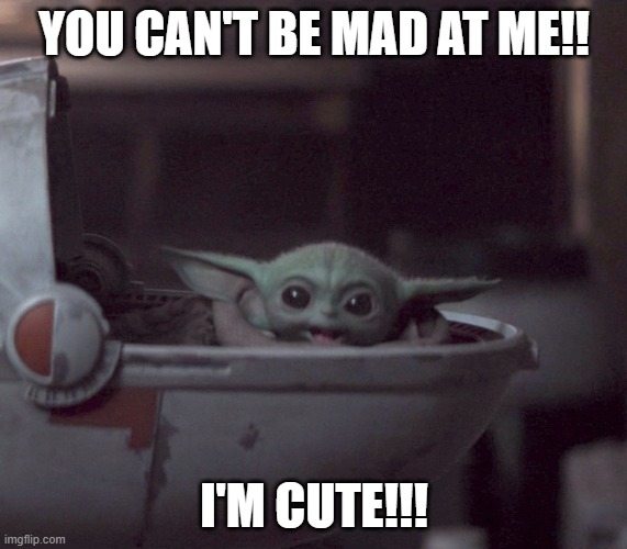 Forgive me? |  YOU CAN'T BE MAD AT ME!! I'M CUTE!!! | image tagged in excited baby yoda | made w/ Imgflip meme maker