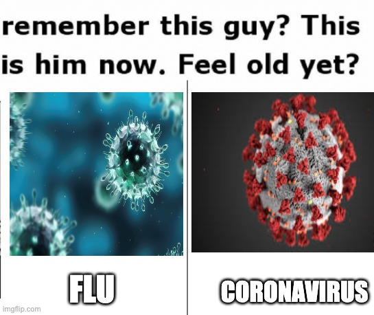 Remember |  FLU; CORONAVIRUS | image tagged in coronavirus,flu,comparison | made w/ Imgflip meme maker