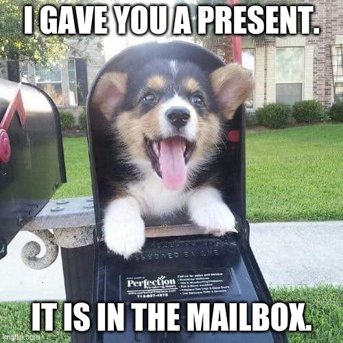 Poopy present doggo |  I GAVE YOU A PRESENT. IT IS IN THE MAILBOX. | image tagged in cute doggo in mailbox | made w/ Imgflip meme maker