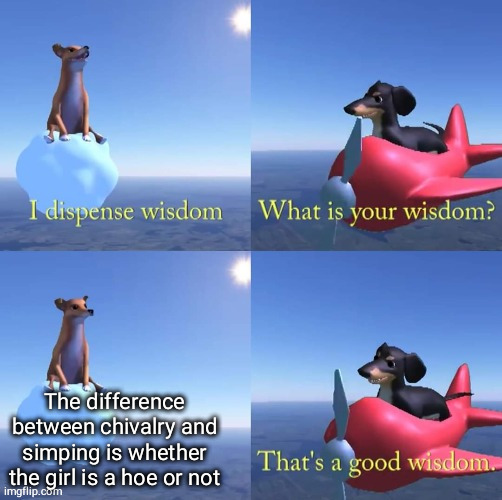Wisdom dog |  The difference between chivalry and simping is whether the girl is a hoe or not | image tagged in wisdom dog,simp | made w/ Imgflip meme maker