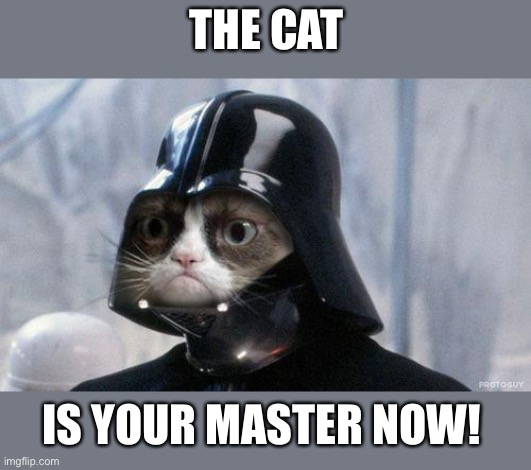 Grumpy Cat Star Wars |  THE CAT; IS YOUR MASTER NOW! | image tagged in memes,grumpy cat star wars,grumpy cat | made w/ Imgflip meme maker