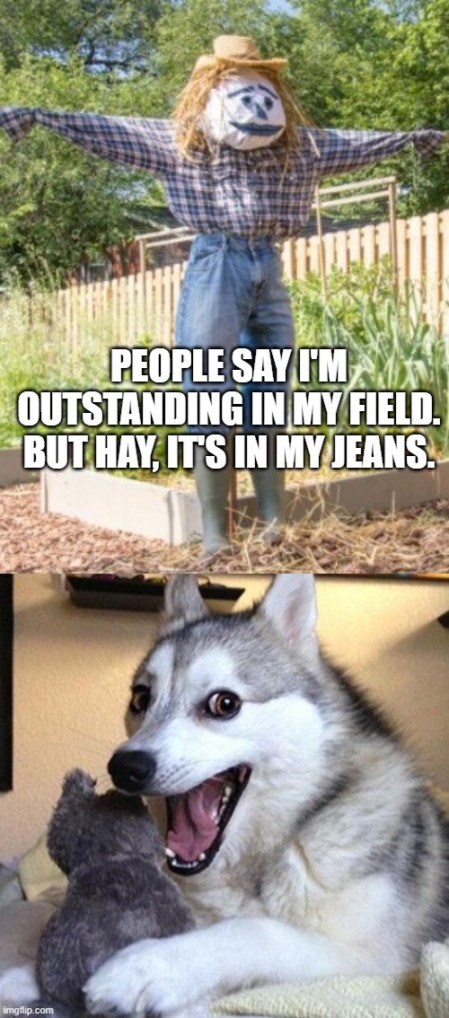Scarecrow pun |  PEOPLE SAY I'M OUTSTANDING IN MY FIELD. BUT HAY, IT'S IN MY JEANS. | made w/ Imgflip meme maker