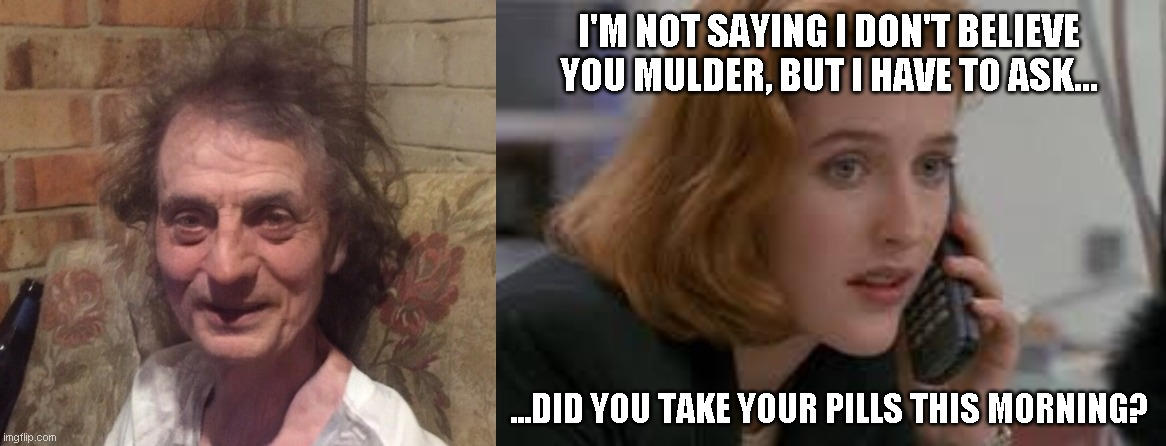 scully doesn't believe |  I'M NOT SAYING I DON'T BELIEVE YOU MULDER, BUT I HAVE TO ASK... ...DID YOU TAKE YOUR PILLS THIS MORNING? | image tagged in scully,x files,funny,humor,memes,x-files | made w/ Imgflip meme maker