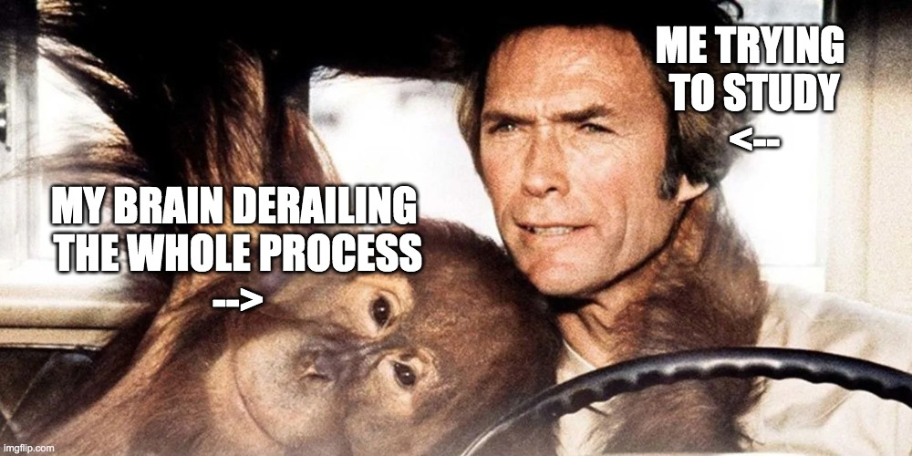 driving with a chimpanzee |  ME TRYING  TO STUDY <--; MY BRAIN DERAILING  THE WHOLE PROCESS --> | image tagged in chimpanzee,clint eastwood,studying | made w/ Imgflip meme maker