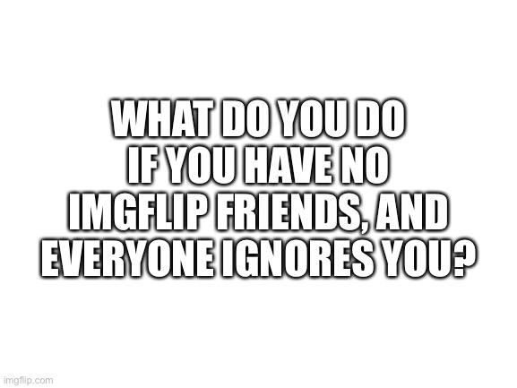 Blank White Template |  WHAT DO YOU DO IF YOU HAVE NO IMGFLIP FRIENDS, AND EVERYONE IGNORES YOU? | image tagged in blank white template | made w/ Imgflip meme maker