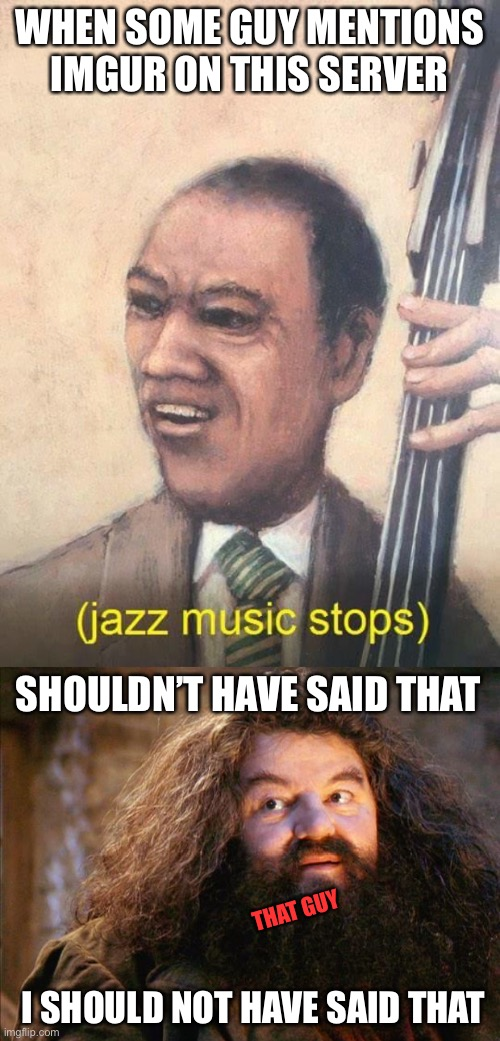 No More Imgur Metioning! |  WHEN SOME GUY MENTIONS IMGUR ON THIS SERVER; SHOULDN'T HAVE SAID THAT; THAT GUY; I SHOULD NOT HAVE SAID THAT | image tagged in hagrid,jazz music stops,imgur,imgflip,memes,funny | made w/ Imgflip meme maker