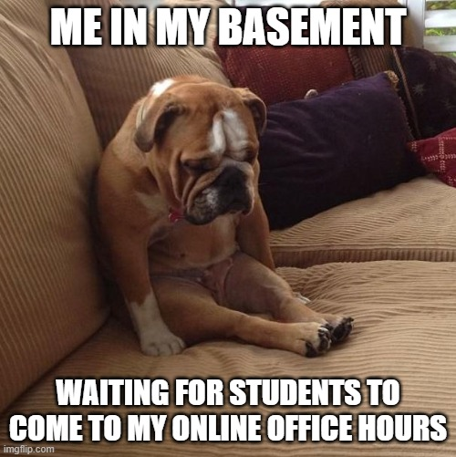 Distance Learning office hours |  ME IN MY BASEMENT; WAITING FOR STUDENTS TO COME TO MY ONLINE OFFICE HOURS | image tagged in bulldogsad | made w/ Imgflip meme maker