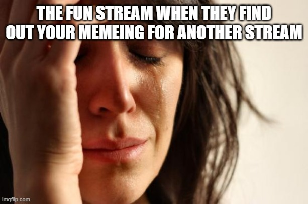 First World Problems |  THE FUN STREAM WHEN THEY FIND OUT YOUR MEMEING FOR ANOTHER STREAM | image tagged in memes,first world problems | made w/ Imgflip meme maker