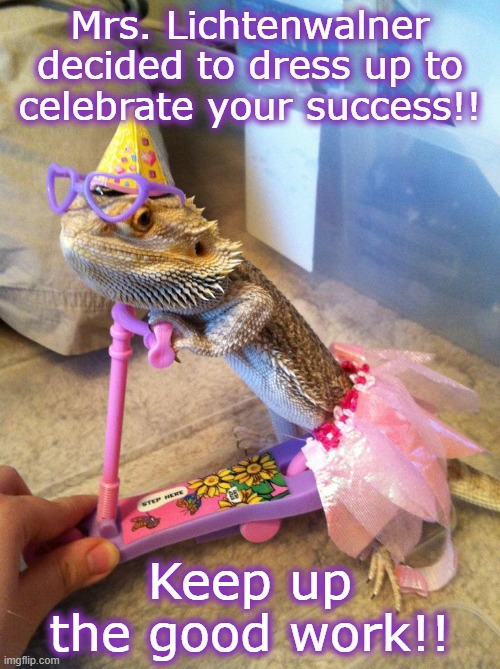 Bearded dragon birthday |  Mrs. Lichtenwalner decided to dress up to celebrate your success!! Keep up the good work!! | image tagged in bearded dragon birthday,celebrate | made w/ Imgflip meme maker