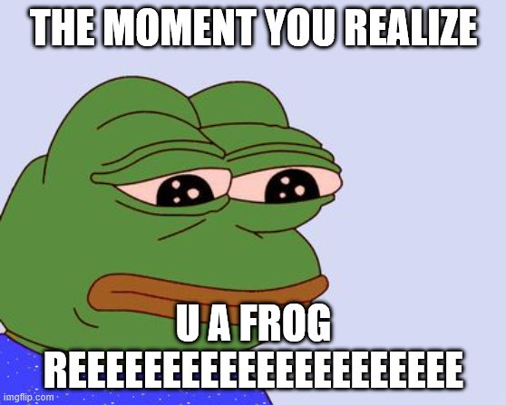 Pepe the Frog |  THE MOMENT YOU REALIZE; U A FROG REEEEEEEEEEEEEEEEEEEEE | image tagged in pepe the frog | made w/ Imgflip meme maker
