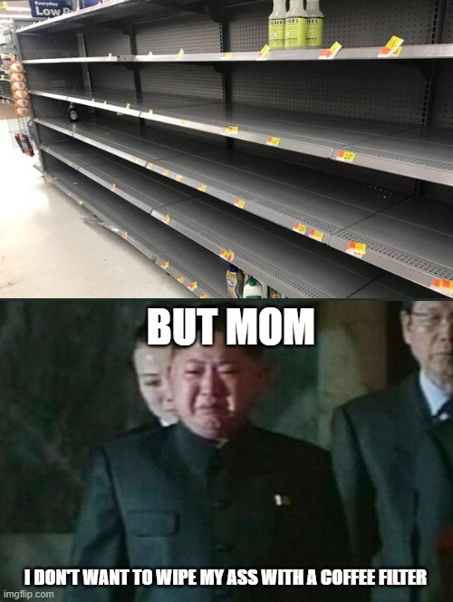 Sorry honey, but there's no more toilet paper left. |  BUT MOM; I DON'T WANT TO WIPE MY ASS WITH A COFFEE FILTER | image tagged in memes,kim jong un sad | made w/ Imgflip meme maker