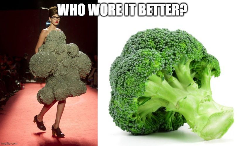 Who wore it better fashion week |  WHO WORE IT BETTER? | image tagged in who wore it better,fashion week,runway fashion,broccoli | made w/ Imgflip meme maker