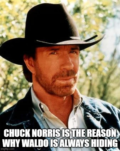Where is He? |  CHUCK NORRIS IS THE REASON WHY WALDO IS ALWAYS HIDING | image tagged in memes,chuck norris | made w/ Imgflip meme maker