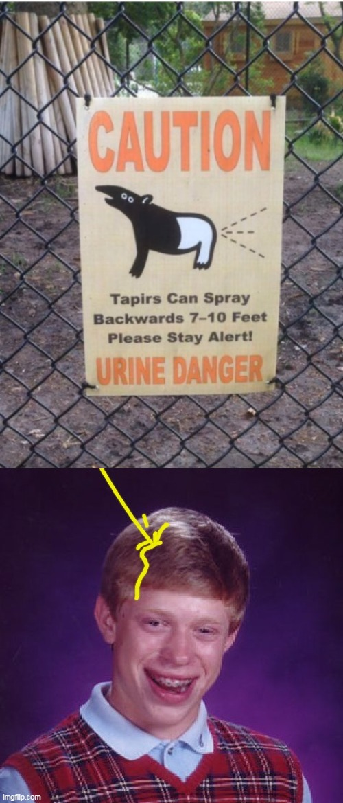 image tagged in caution sign,urine,bad luck brian,caution,danger,memes | made w/ Imgflip meme maker