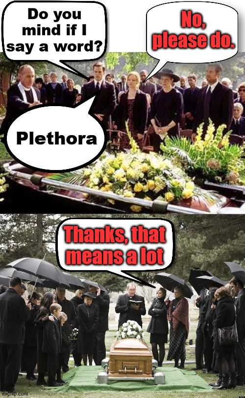 Funeral humor |  Do you mind if I say a word? No, please do. Plethora; Thanks, that means a lot | image tagged in funeral,words of wisdom | made w/ Imgflip meme maker
