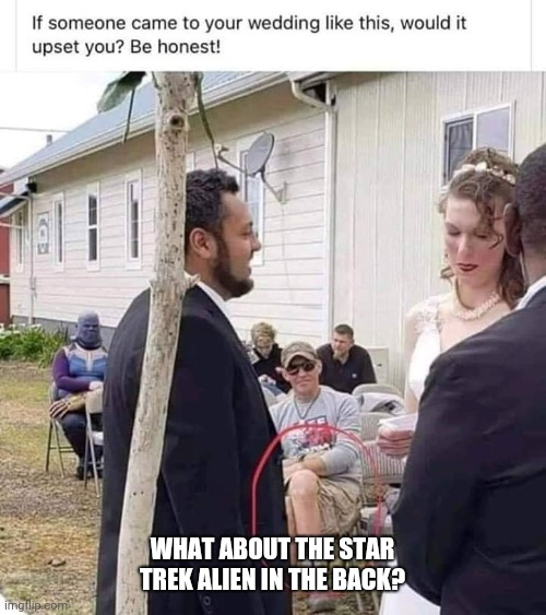 WHAT ABOUT THE STAR TREK ALIEN IN THE BACK? | image tagged in wedding | made w/ Imgflip meme maker