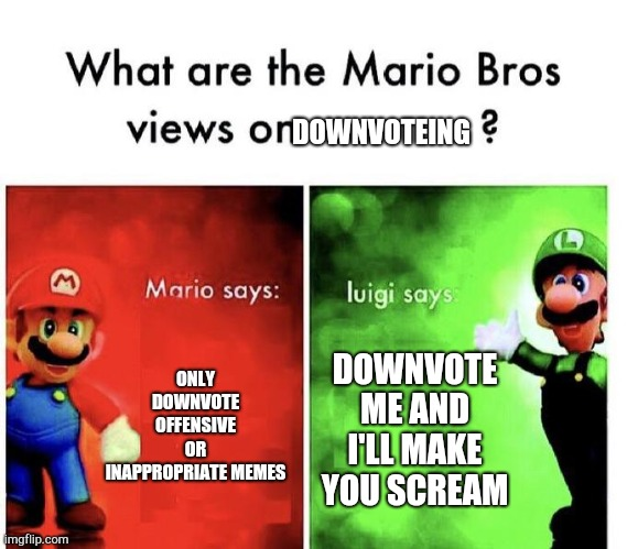 Mario Bros Views |  DOWNVOTEING; ONLY DOWNVOTE OFFENSIVE OR INAPPROPRIATE MEMES; DOWNVOTE ME AND I'LL MAKE YOU SCREAM | image tagged in mario bros views | made w/ Imgflip meme maker