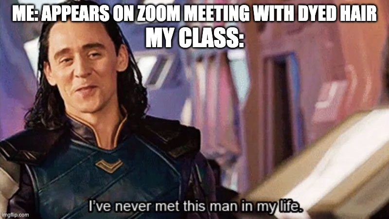 I Have Never Met This Man In My Life |  ME: APPEARS ON ZOOM MEETING WITH DYED HAIR; MY CLASS: | image tagged in i have never met this man in my life,zoom,loki,hair | made w/ Imgflip meme maker