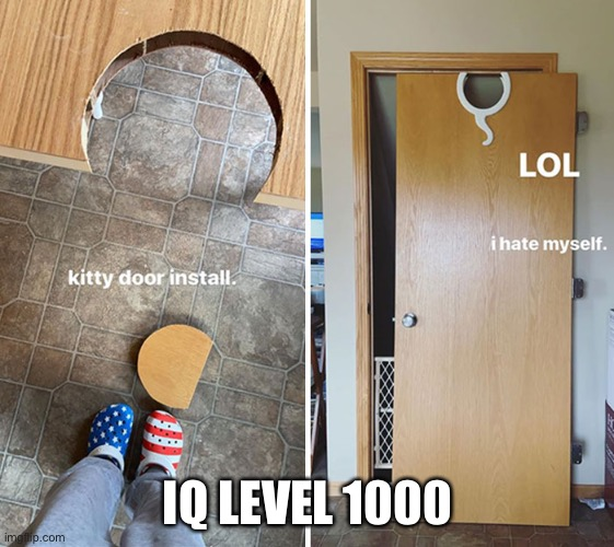 Best thing to happen during quarantine |  IQ LEVEL 1000 | image tagged in covid-19,fail | made w/ Imgflip meme maker