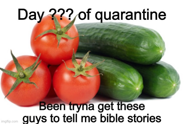 I like to talk to tomatoes |  Day ??? of quarantine; Been tryna get these guys to tell me bible stories | image tagged in tomato,cucumber | made w/ Imgflip meme maker