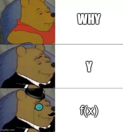 The proper ways to question your mom, your friend, or your math teacher |  WHY; Y; f(x) | image tagged in fancy pooh | made w/ Imgflip meme maker