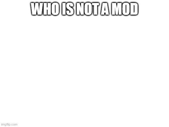 Blank White Template |  WHO IS NOT A MOD | image tagged in blank white template | made w/ Imgflip meme maker