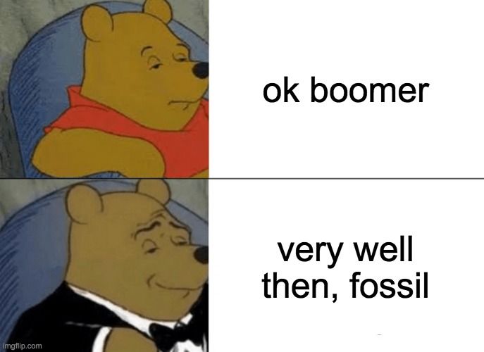Tuxedo Winnie The Pooh Meme |  ok boomer; very well then, fossil | image tagged in memes,tuxedo winnie the pooh | made w/ Imgflip meme maker