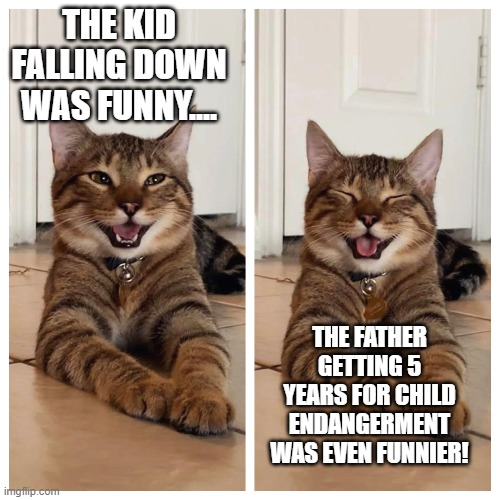 Joking cat | THE KID FALLING DOWN WAS FUNNY.... THE FATHER GETTING 5 YEARS FOR CHILD ENDANGERMENT WAS EVEN FUNNIER! | image tagged in joking cat | made w/ Imgflip meme maker