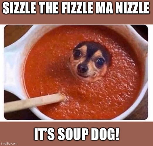 SIZZLE THE FIZZLE MA NIZZLE; IT'S SOUP DOG! | image tagged in snoop dogg,fun,funny,funny memes | made w/ Imgflip meme maker