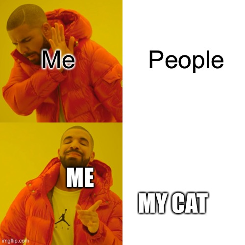 Drake Hotline Bling |  People; Me; ME                                            MY CAT | image tagged in memes,drake hotline bling | made w/ Imgflip meme maker