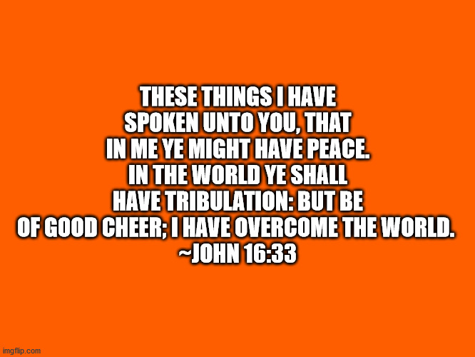 Bible VerseJohn 16:33 |  THESE THINGS I HAVE SPOKEN UNTO YOU, THAT IN ME YE MIGHT HAVE PEACE. IN THE WORLD YE SHALL HAVE TRIBULATION: BUT BE OF GOOD CHEER; I HAVE OVERCOME THE WORLD.  ~JOHN 16:33 | image tagged in bible verse,bible,god's word,john 16-33 | made w/ Imgflip meme maker