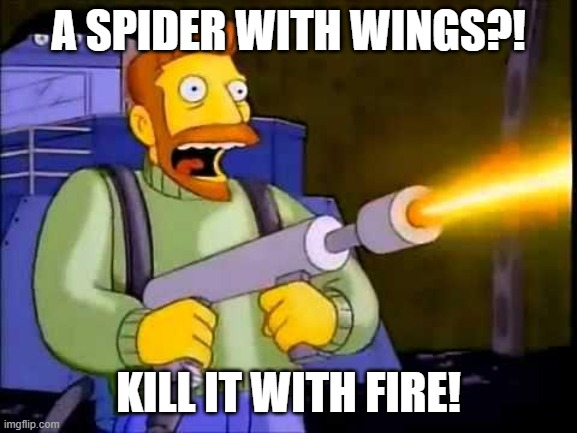 A SPIDER WITH WINGS?! KILL IT WITH FIRE! | image tagged in kill it with fire | made w/ Imgflip meme maker