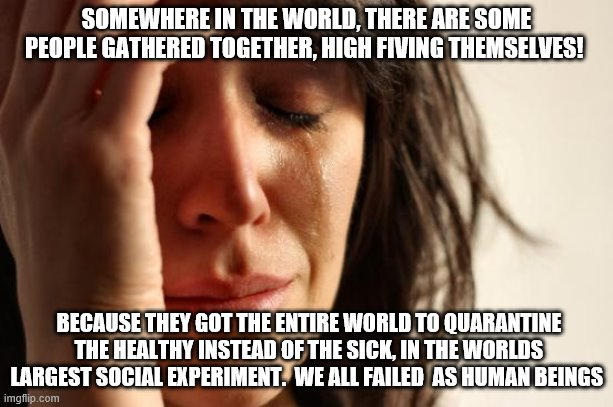 Quarantine blues |  SOMEWHERE IN THE WORLD, THERE ARE SOME PEOPLE GATHERED TOGETHER, HIGH FIVING THEMSELVES! BECAUSE THEY GOT THE ENTIRE WORLD TO QUARANTINE THE HEALTHY INSTEAD OF THE SICK, IN THE WORLDS LARGEST SOCIAL EXPERIMENT.  WE ALL FAILED  AS HUMAN BEINGS | image tagged in memes,first world problems | made w/ Imgflip meme maker