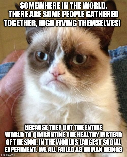 Quarantine  Cat |  SOMEWHERE IN THE WORLD, THERE ARE SOME PEOPLE GATHERED TOGETHER, HIGH FIVING THEMSELVES! BECAUSE THEY GOT THE ENTIRE WORLD TO QUARANTINE THE HEALTHY INSTEAD OF THE SICK, IN THE WORLDS LARGEST SOCIAL EXPERIMENT. WE ALL FAILED AS HUMAN BEINGS | image tagged in memes,grumpy cat | made w/ Imgflip meme maker