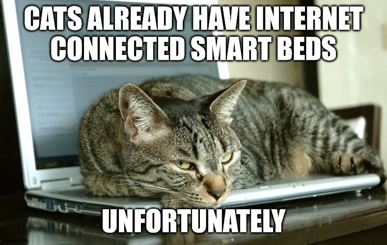 CATS ALREADY HAVE INTERNET CONNECTED SMART BEDS; UNFORTUNATELY | made w/ Imgflip meme maker