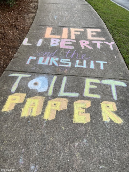 Life Liberty and the Pursuit of Toilet Paper | image tagged in toilet paper,coronavirus,life liberty and the pursuit of happiness,thomas jefferson,hamilton | made w/ Imgflip meme maker
