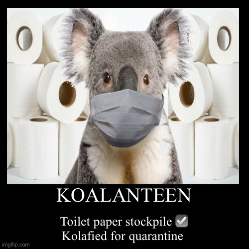 Quarantine qualification | KOALANTEEN | Toilet paper stockpile ☑️Kolafied for quarantine | image tagged in funny,demotivationals,surprised koala,quarantine,toilet paper,fml | made w/ Imgflip demotivational maker