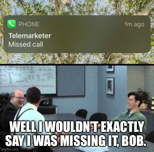 WELL I WOULDN'T EXACTLY SAY I WAS MISSING IT, BOB. | image tagged in office space,telemarketer | made w/ Imgflip meme maker