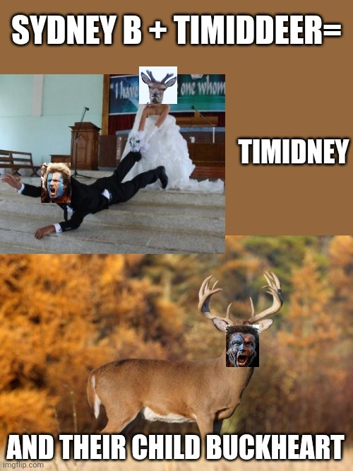 Couldn't resist |  SYDNEY B + TIMIDDEER=; TIMIDNEY; AND THEIR CHILD BUCKHEART | image tagged in whitetail deer,timiddeer,sydneyb,braveheart mel gibson | made w/ Imgflip meme maker