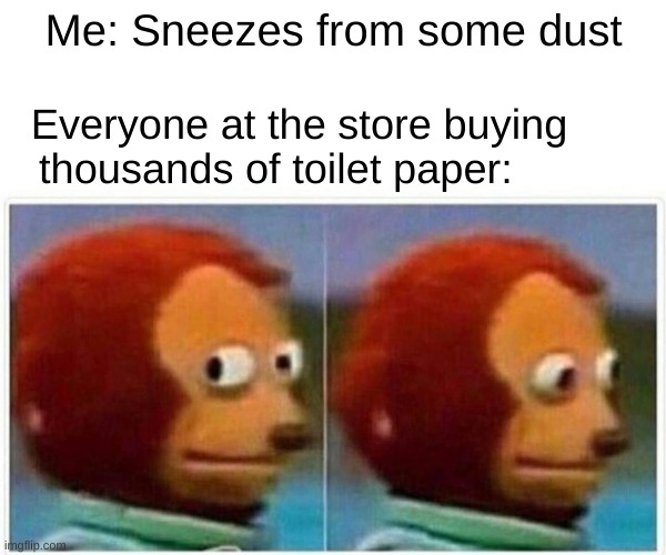 Monkey Puppet Meme |  Me: Sneezes from some dust; Everyone at the store buying thousands of toilet paper: | image tagged in memes,monkey puppet,sneeze,dust,store,toilet paper | made w/ Imgflip meme maker