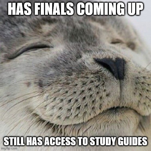 happy seal finals |  HAS FINALS COMING UP; STILL HAS ACCESS TO STUDY GUIDES | image tagged in seal,happy,finals | made w/ Imgflip meme maker