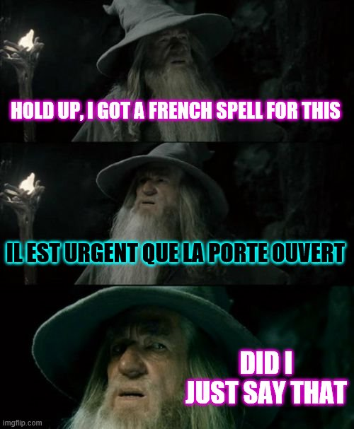 Confused Gandalf Meme |  HOLD UP, I GOT A FRENCH SPELL FOR THIS; IL EST URGENT QUE LA PORTE OUVERT; DID I JUST SAY THAT | image tagged in memes,confused gandalf | made w/ Imgflip meme maker