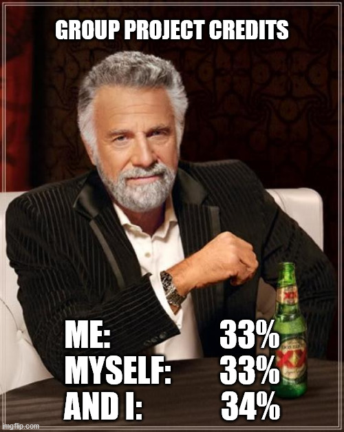 Group project |  GROUP PROJECT CREDITS; ME:                  33% MYSELF:        33% AND I:             34% | image tagged in memes,the most interesting man in the world,school,quarantine | made w/ Imgflip meme maker