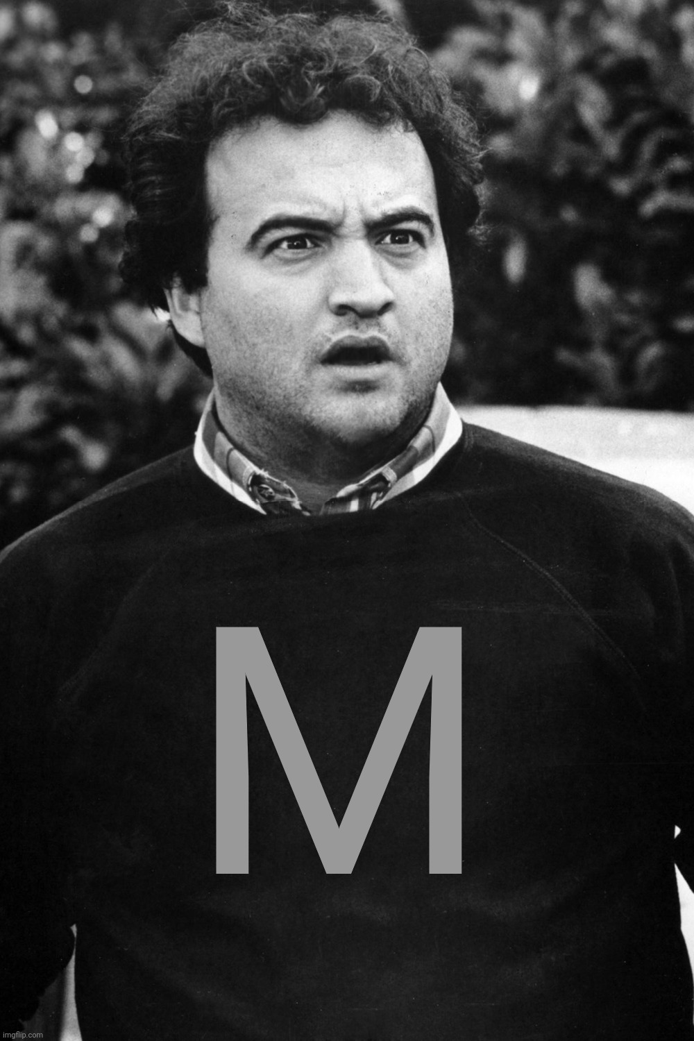 My MOD tag became an M tag.  Will Owners get an O tag? |  M | image tagged in animal house blank,tag,moderators,owners,upgrade,imgflip | made w/ Imgflip meme maker