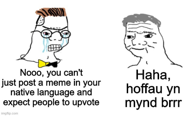 Mae hyn yn ddoniol |  Haha, hoffau yn mynd brrr; Nooo, you can't just post a meme in your native language and expect people to upvote | image tagged in noooo you can't just,memes,funny,wales,language | made w/ Imgflip meme maker
