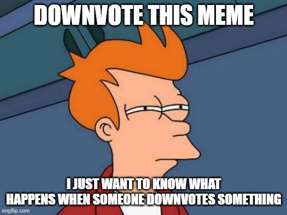 Futurama Fry |  DOWNVOTE THIS MEME; I JUST WANT TO KNOW WHAT HAPPENS WHEN SOMEONE DOWNVOTES SOMETHING | image tagged in memes,futurama fry | made w/ Imgflip meme maker