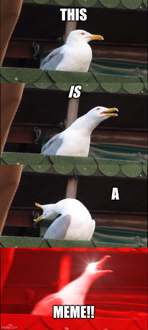 Inhaling Seagull Meme |  THIS; IS; A; MEME!! | image tagged in memes,inhaling seagull | made w/ Imgflip meme maker