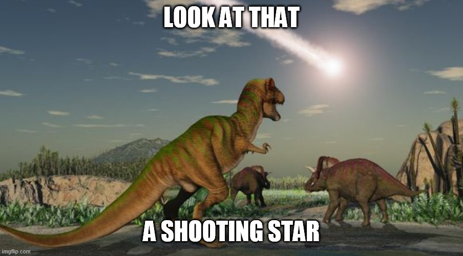 Make a wish |  LOOK AT THAT; A SHOOTING STAR | image tagged in dinosaurs meteor,me irl,shooting star,memes,history | made w/ Imgflip meme maker