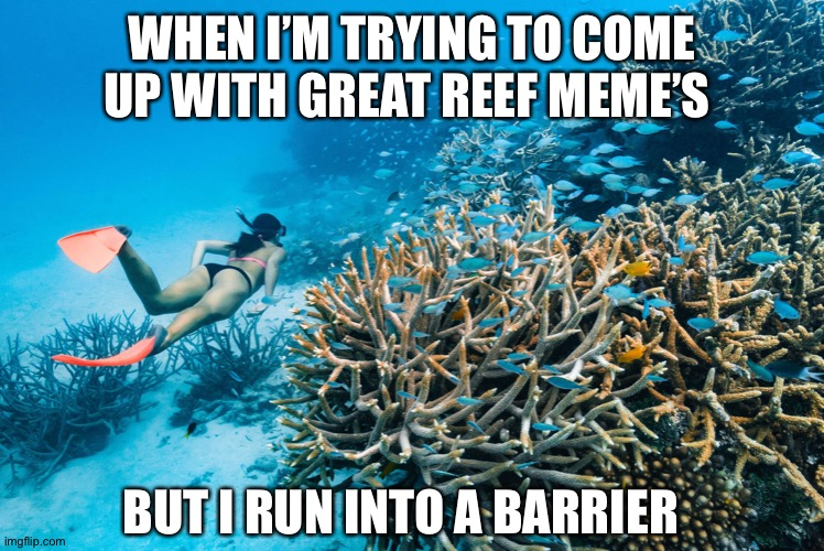 Reef memes |  WHEN I'M TRYING TO COME UP WITH GREAT REEF MEME'S; BUT I RUN INTO A BARRIER | image tagged in biology | made w/ Imgflip meme maker