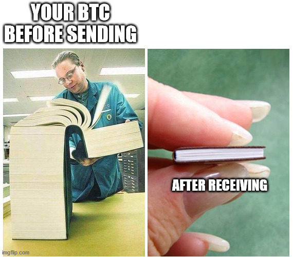 Bitcoin before sending and after receiving |  YOUR BTC BEFORE SENDING; AFTER RECEIVING | image tagged in big book small book | made w/ Imgflip meme maker